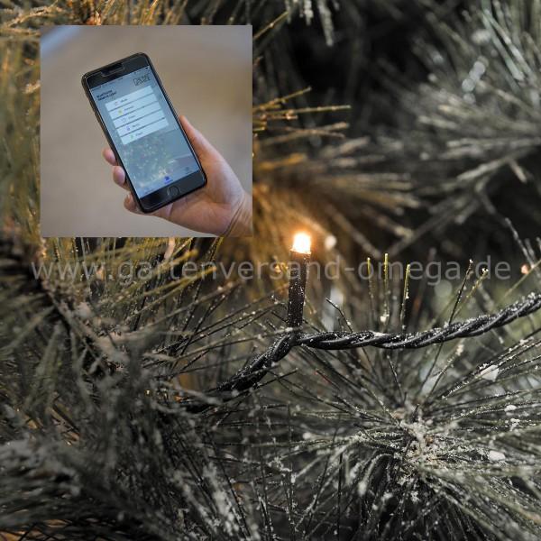 LED-Außenlichterkette mit App-Steuerung